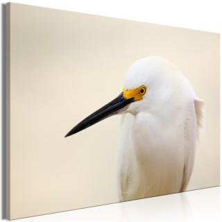 Πίνακας - Snowy Egret (1 Part) Wide
