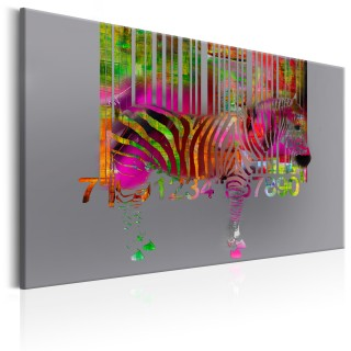 Πίνακας - Code of Zebra