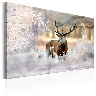 Πίνακας - Deer in the Cold