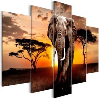 Πίνακας - Wandering Elephant (5 Parts) Wide