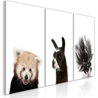 Πίνακας - Friendly Animals (Collection)