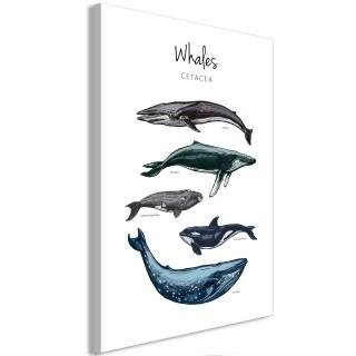 Πίνακας - Whales (1 Part) Vertical