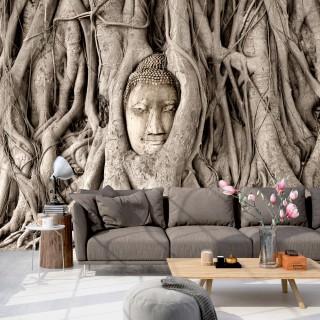 Φωτοταπετσαρία - Buddha's Tree