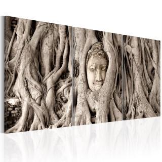 Πίνακας - Meditation's Tree