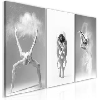 Πίνακας - Ballet (Collection)