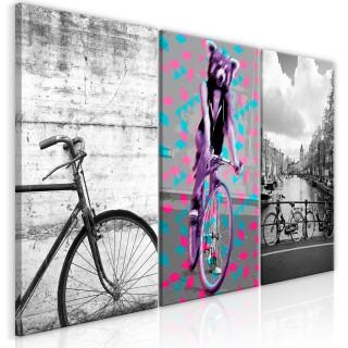 Πίνακας - Bikes (Collection)