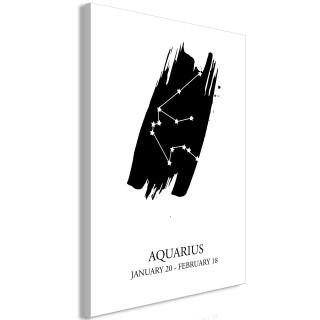Πίνακας - Zodiac Signs: Aquarius (1 Part) Vertical
