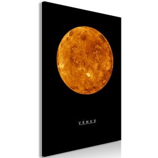 Πίνακας - Venus (1 Part) Vertical