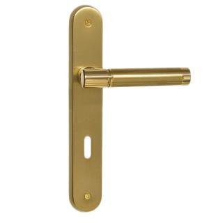 Πόμολο πόρτας χειρολαβή με πλάκα 2161 Όρο ματ / Όρο