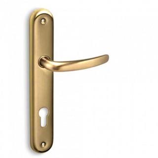 Πόμολα πόρτας χειρολαβή με πλάκα C605 σε Ματ Όρο
