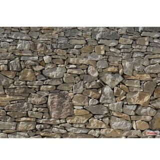 Φωτοταπετσαρία τοίχου Komar 8-727 Stone Wall 3.68 cm x 2.54 cm