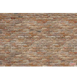 Φωτοταπετσαρία τοίχου Komar 8-741 Backstein 3.68 cm x 2.54 cm