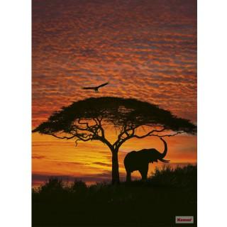 Φωτοταπετσαρία τοίχου Komar 4-501 African Sunset 1.94m x 2.70m