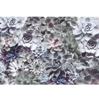 Φωτοταπετσαρία τοίχου Komar 8-962 Shades 3.68 cm x 2.54 cm